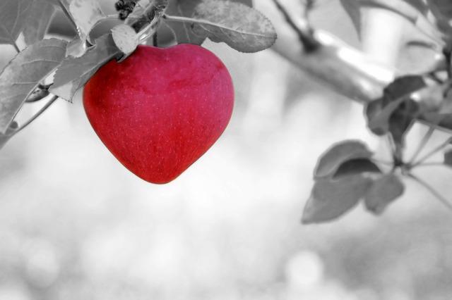 apple-570965_640