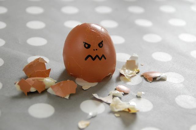egg-100808_640